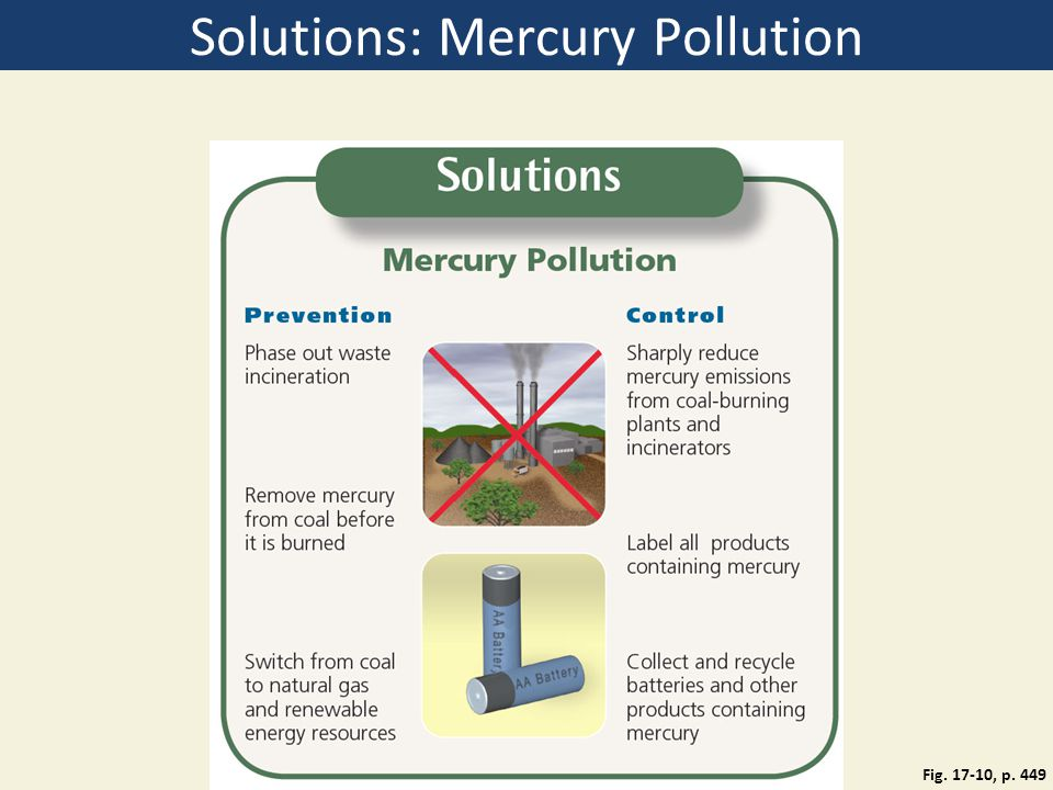 Solutions: Mercury Pollution