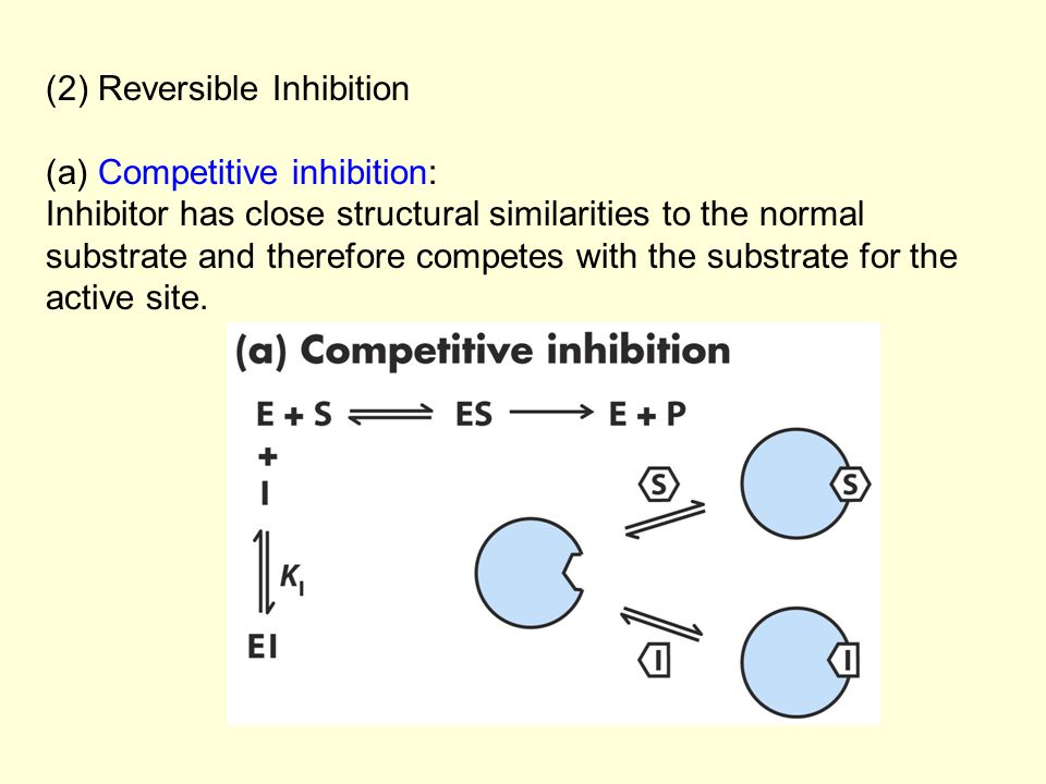 (2) Reversible Inhibition