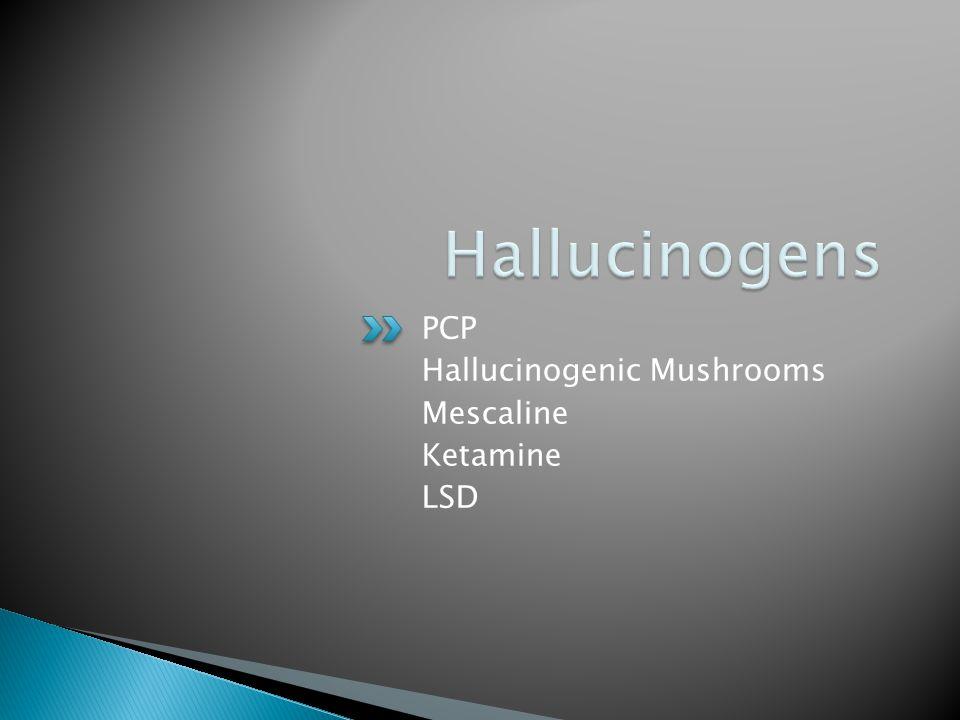 Hallucinogens PCP Hallucinogenic Mushrooms Mescaline Ketamine LSD