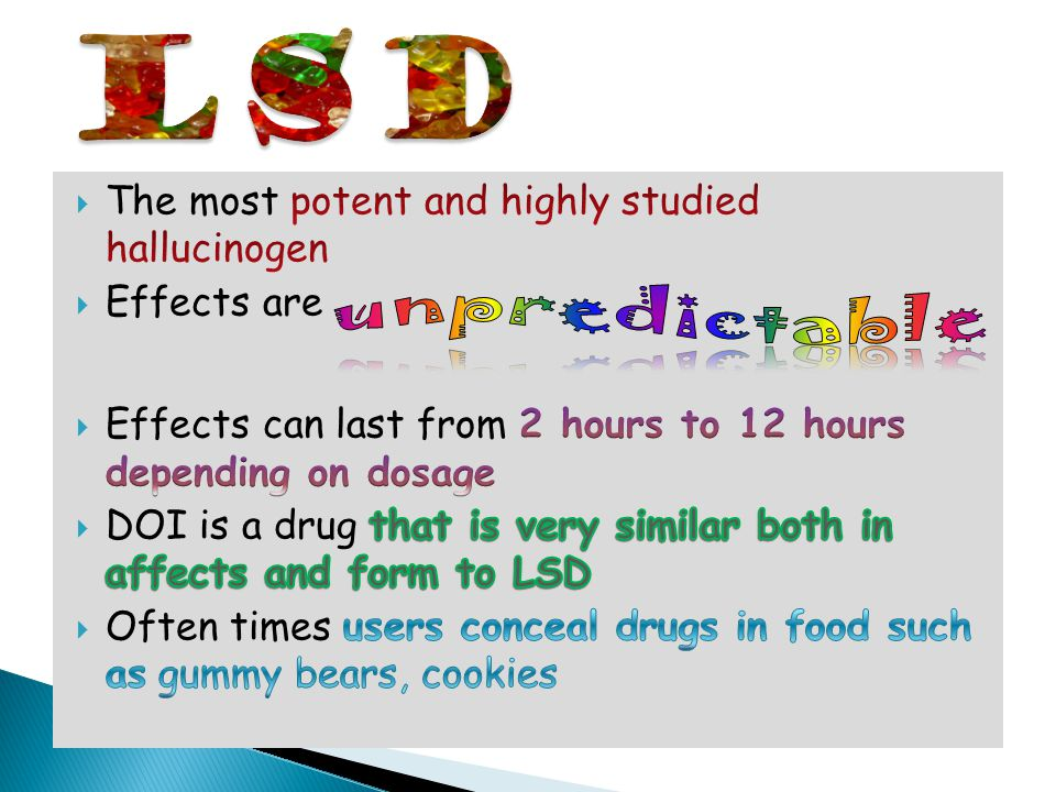 LSD unpredictable The most potent and highly studied hallucinogen