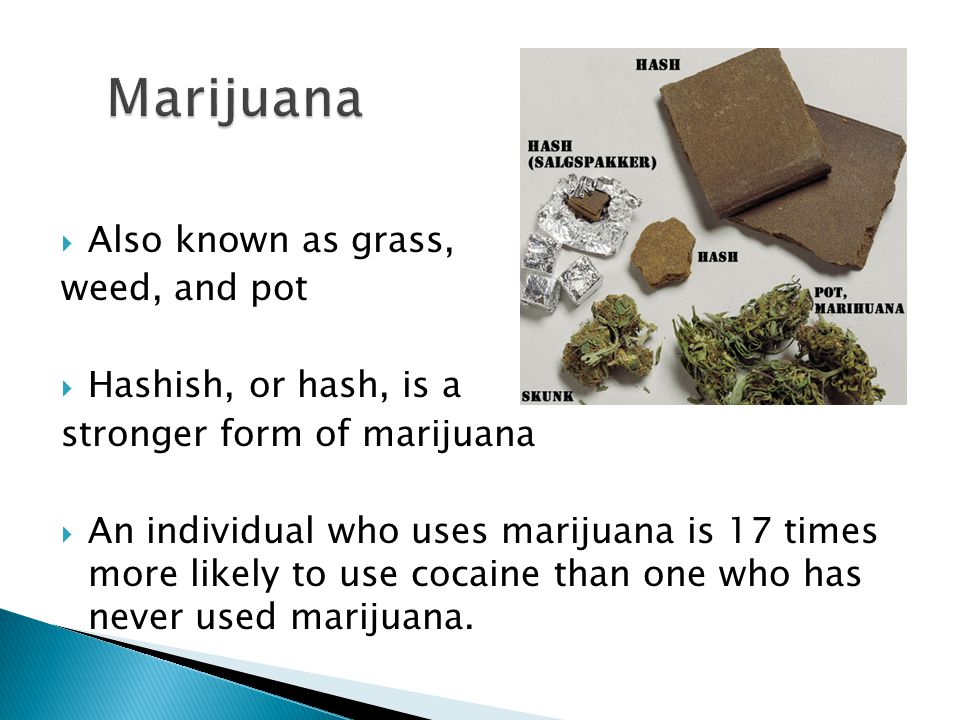 Marijuana Also known as grass, weed, and pot Hashish, or hash, is a