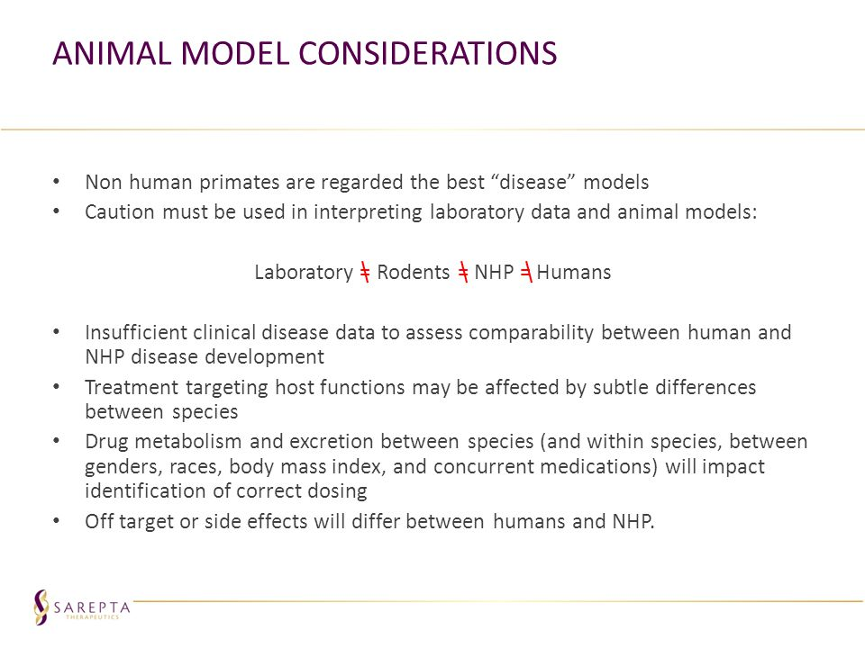 Animal Model Considerations