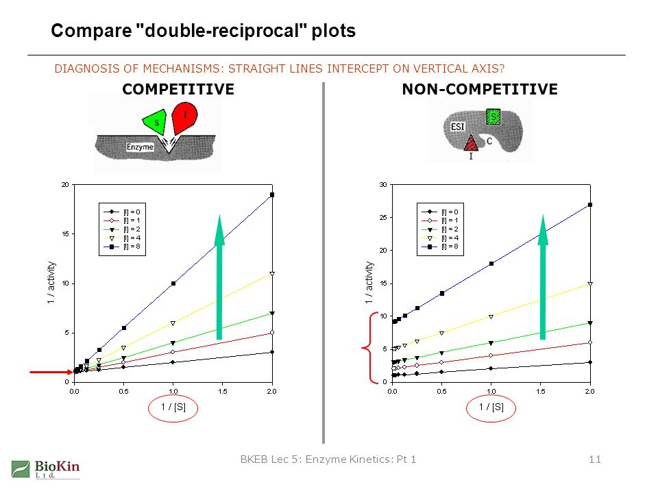 Compare double-reciprocal plots