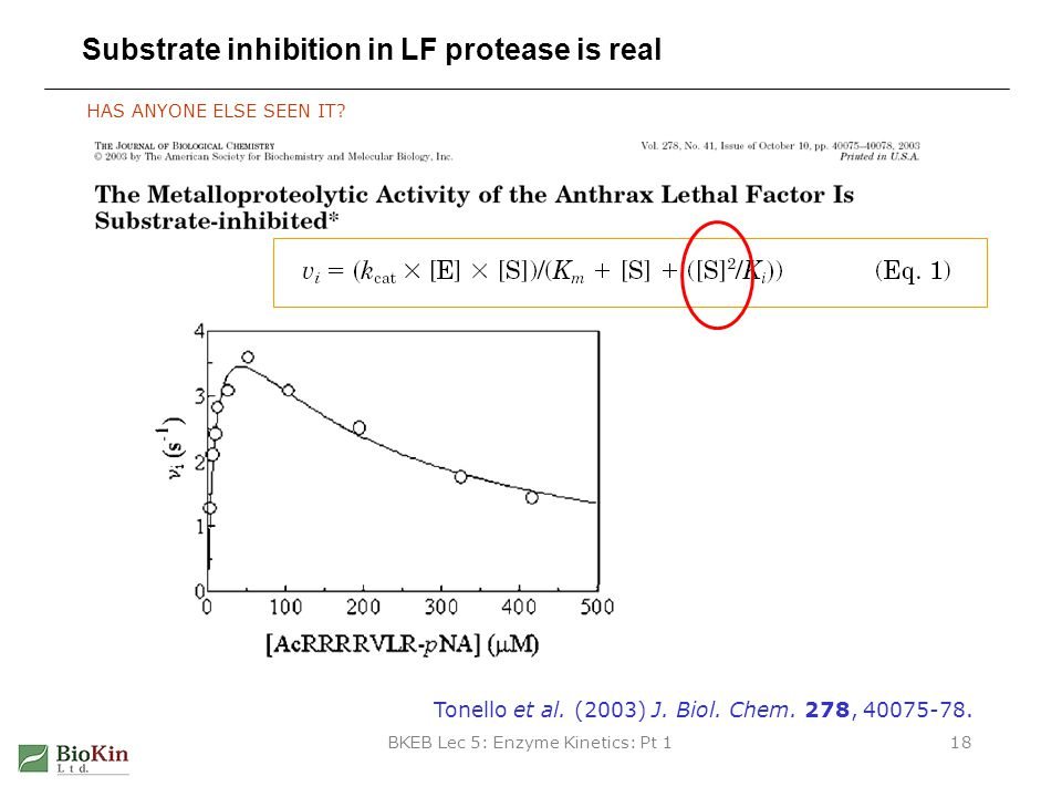 Substrate inhibition in LF protease is real