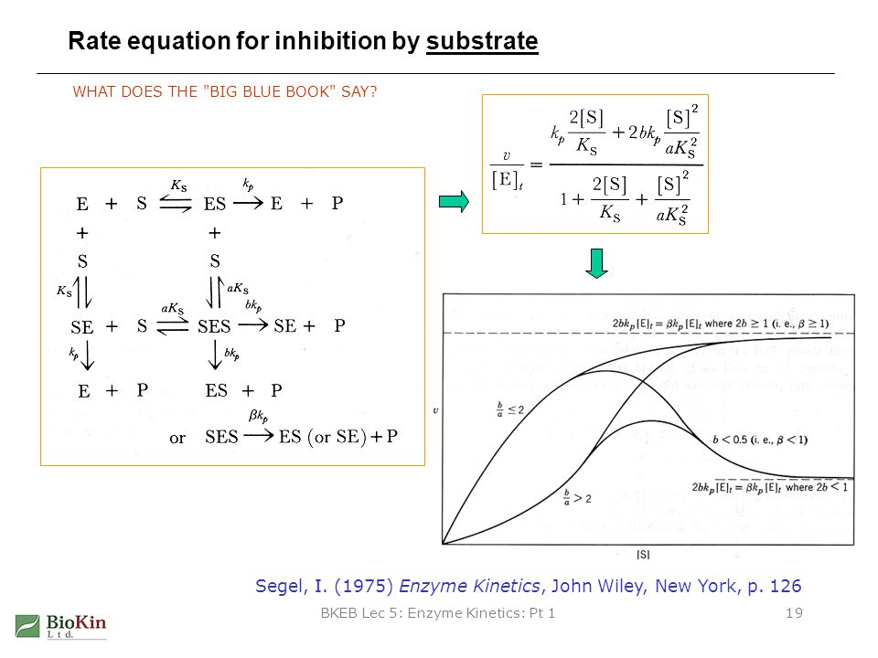 Rate equation for inhibition by substrate