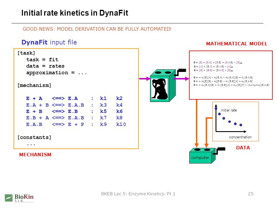 Initial rate kinetics in DynaFit