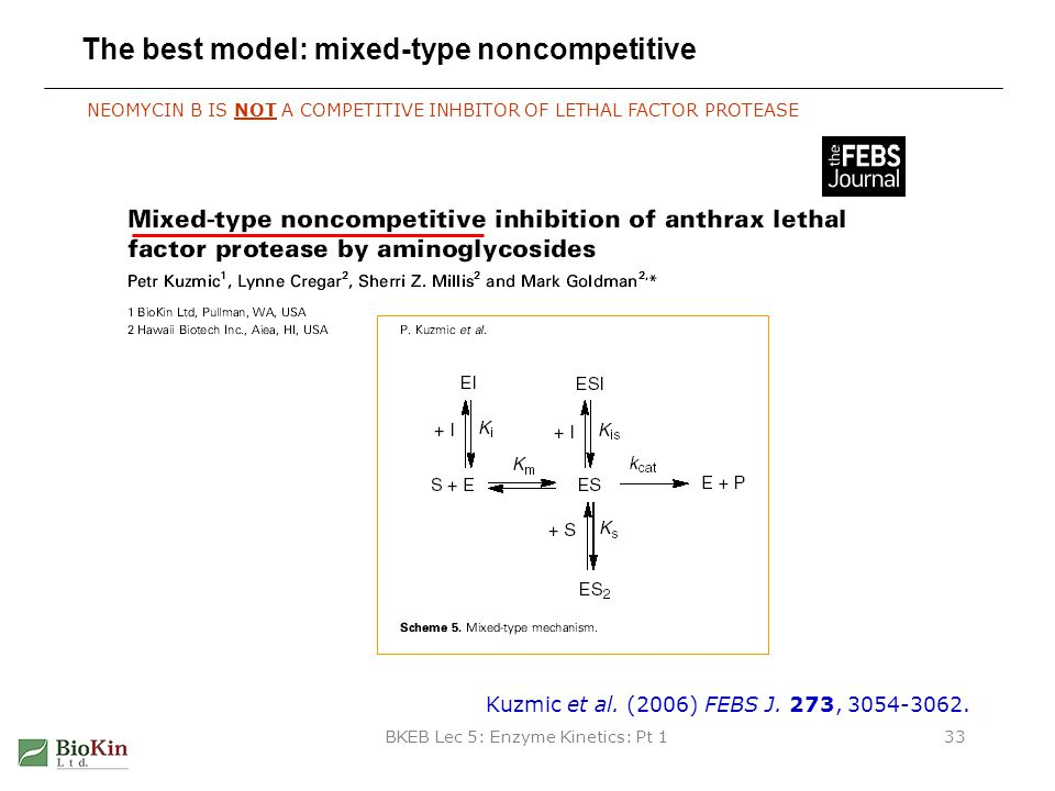 The best model: mixed-type noncompetitive
