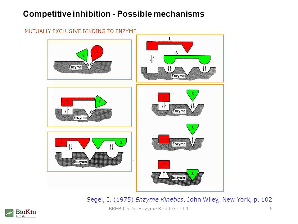 Competitive inhibition - Possible mechanisms