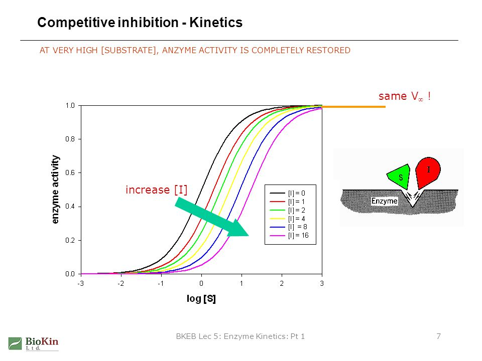 Competitive inhibition - Kinetics