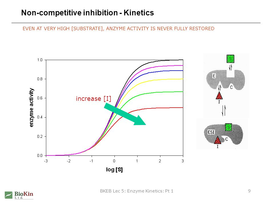 Non-competitive inhibition - Kinetics