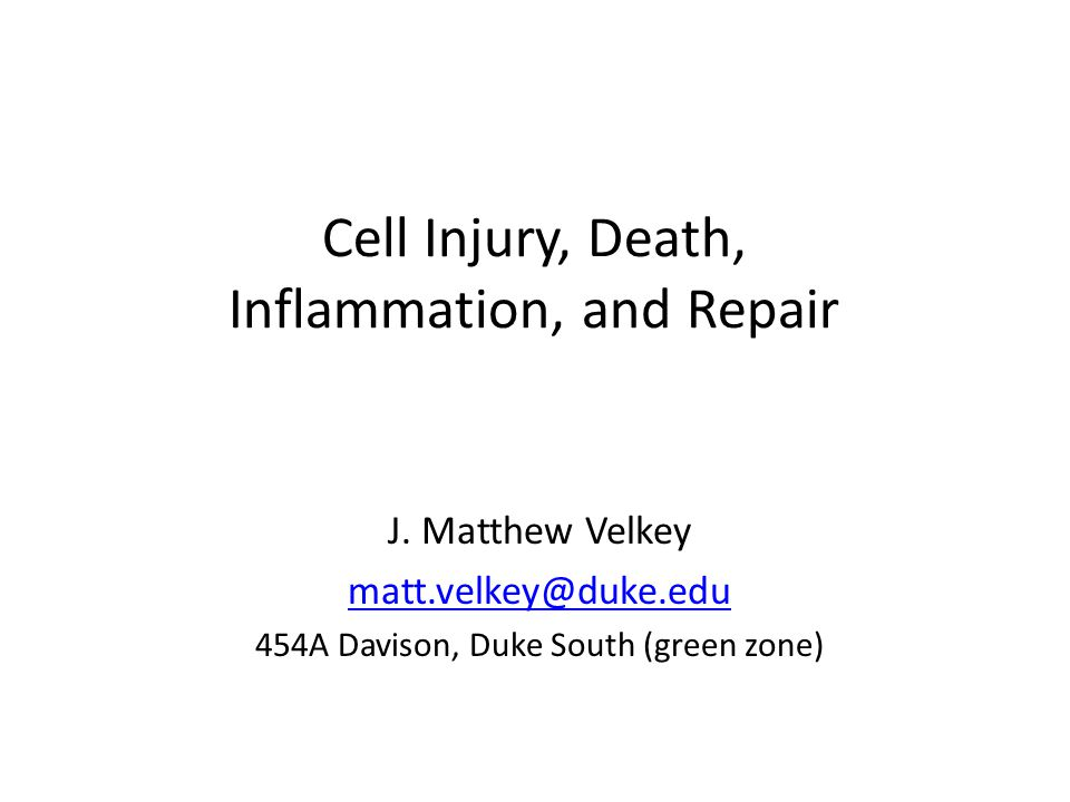 Cell Injury, Death, Inflammation, and Repair