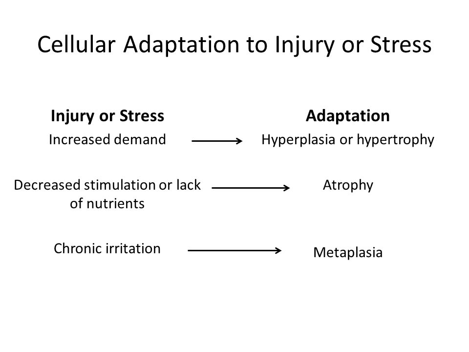Cellular Adaptation to Injury or Stress