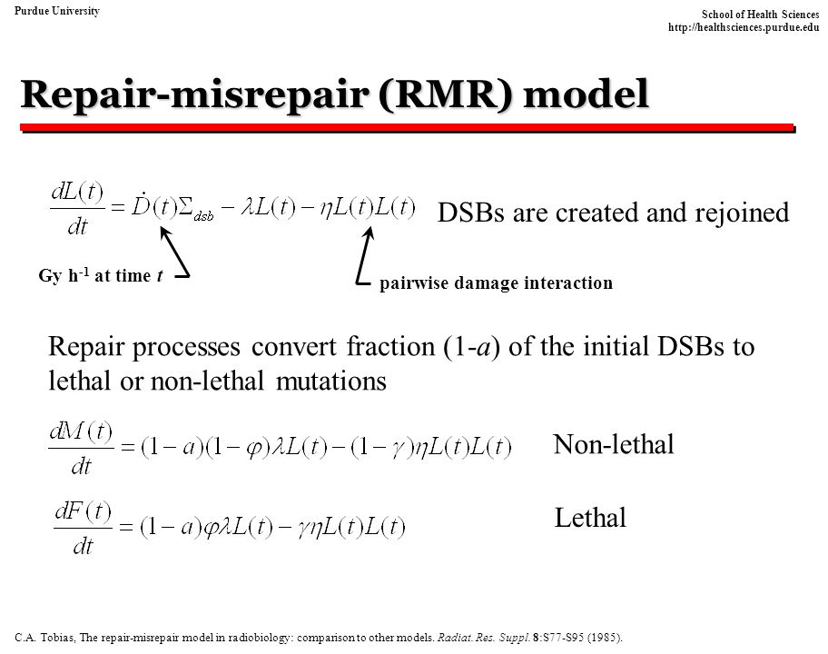 Repair-misrepair (RMR) model