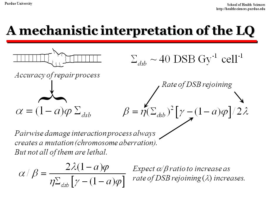 A mechanistic interpretation of the LQ
