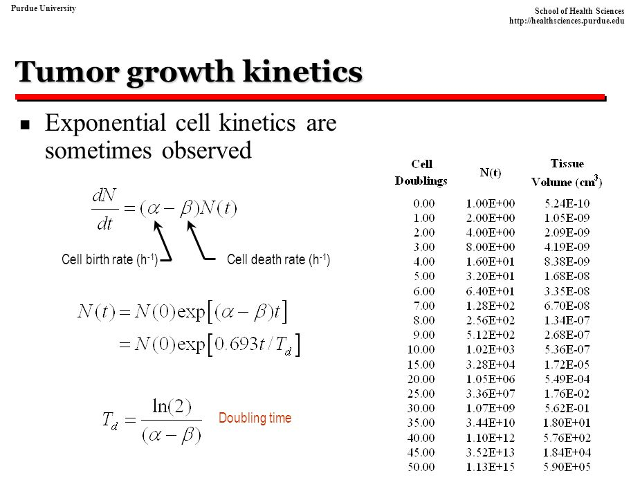 Tumor growth kinetics Exponential cell kinetics are sometimes observed