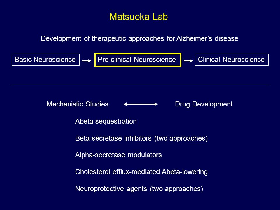 Matsuoka Lab Development of therapeutic approaches for Alzheimer's disease. Basic Neuroscience. Pre-clinical Neuroscience.