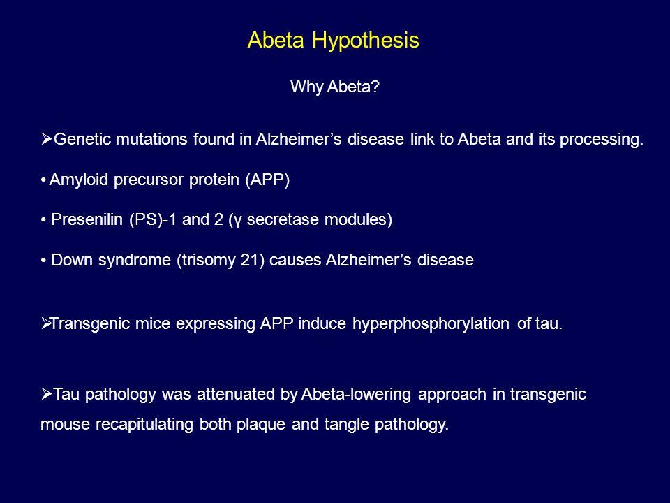Abeta Hypothesis Why Abeta