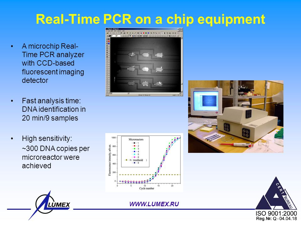Real-Time PCR on a chip equipment