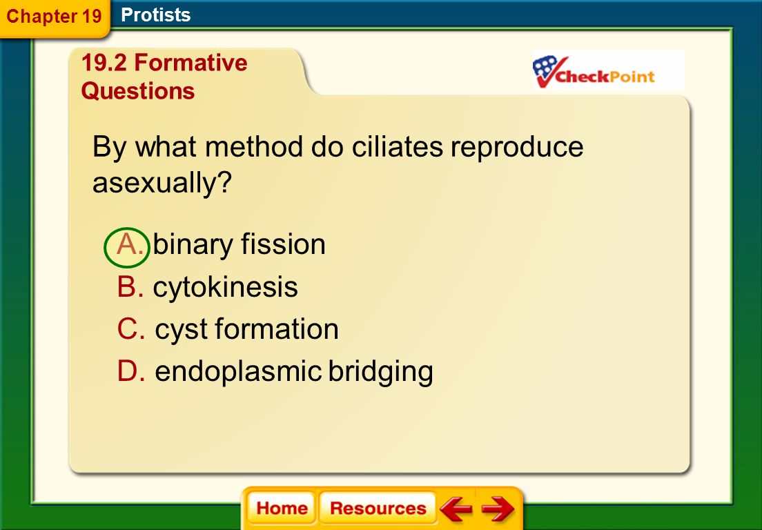 By what method do ciliates reproduce asexually
