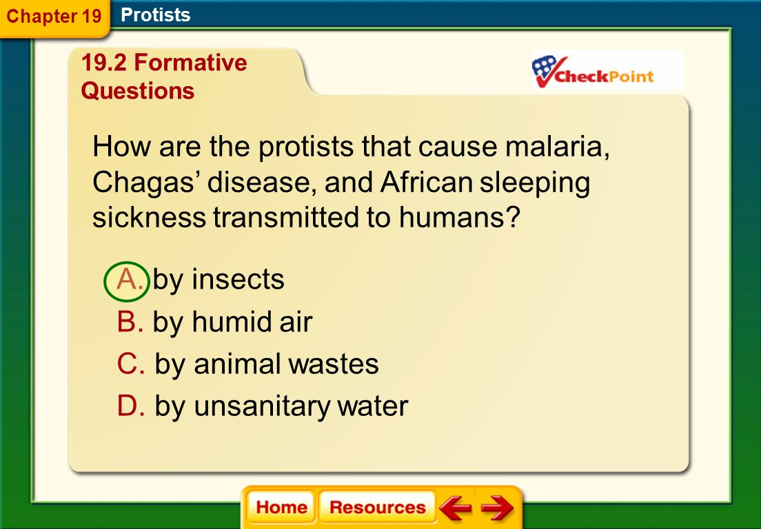 How are the protists that cause malaria,