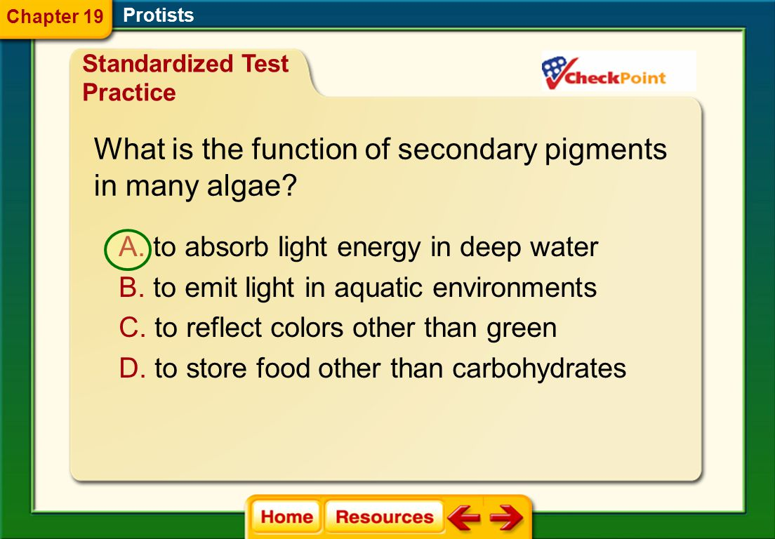 What is the function of secondary pigments in many algae