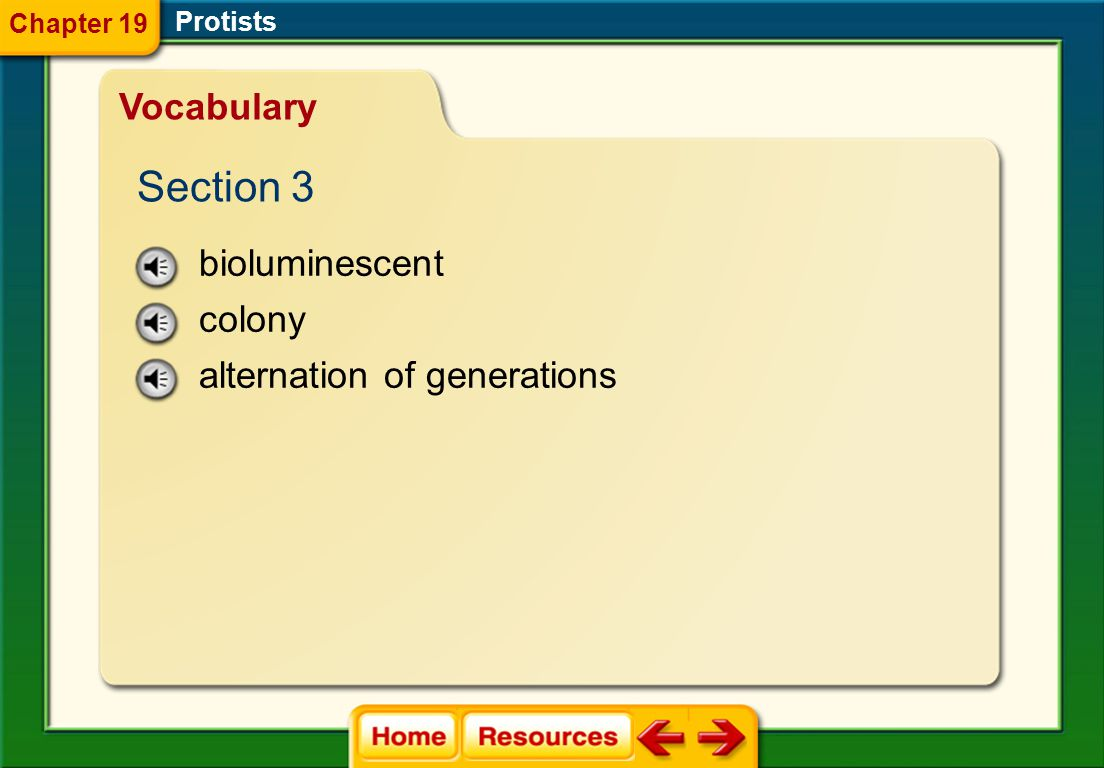 Section 3 Vocabulary bioluminescent colony alternation of generations
