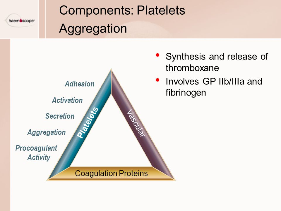 Components: Platelets Aggregation