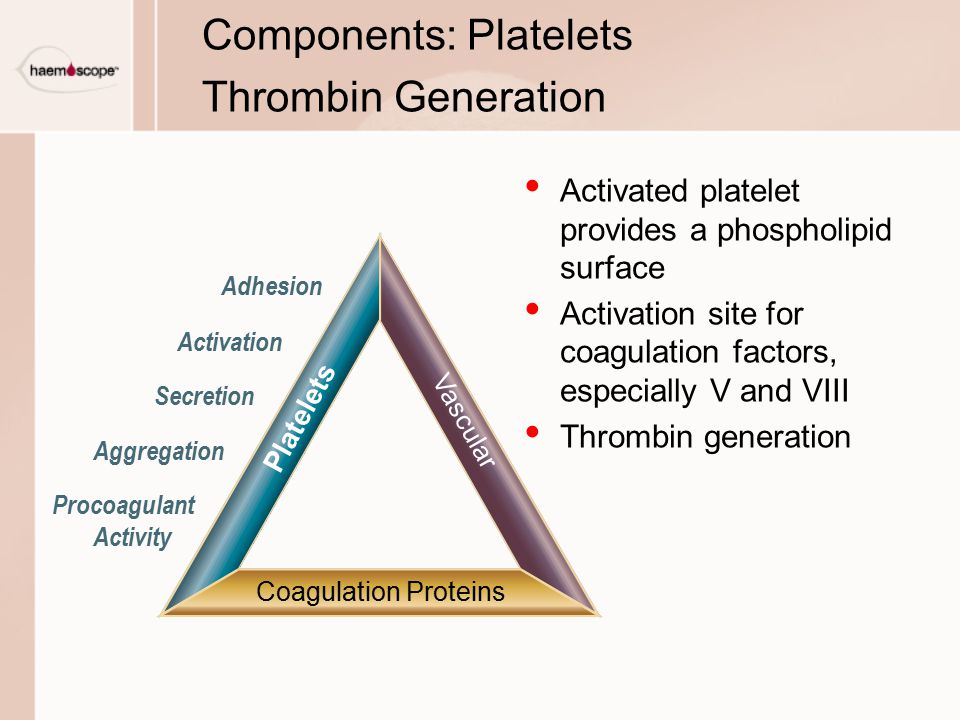 Components: Platelets Thrombin Generation