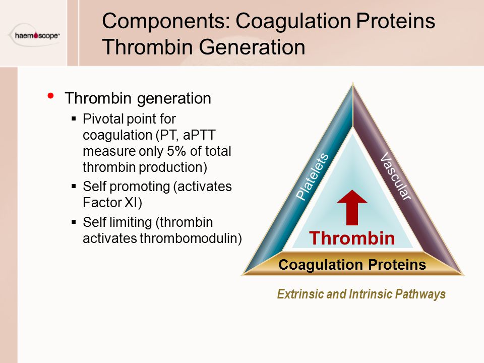 Components: Coagulation Proteins Thrombin Generation