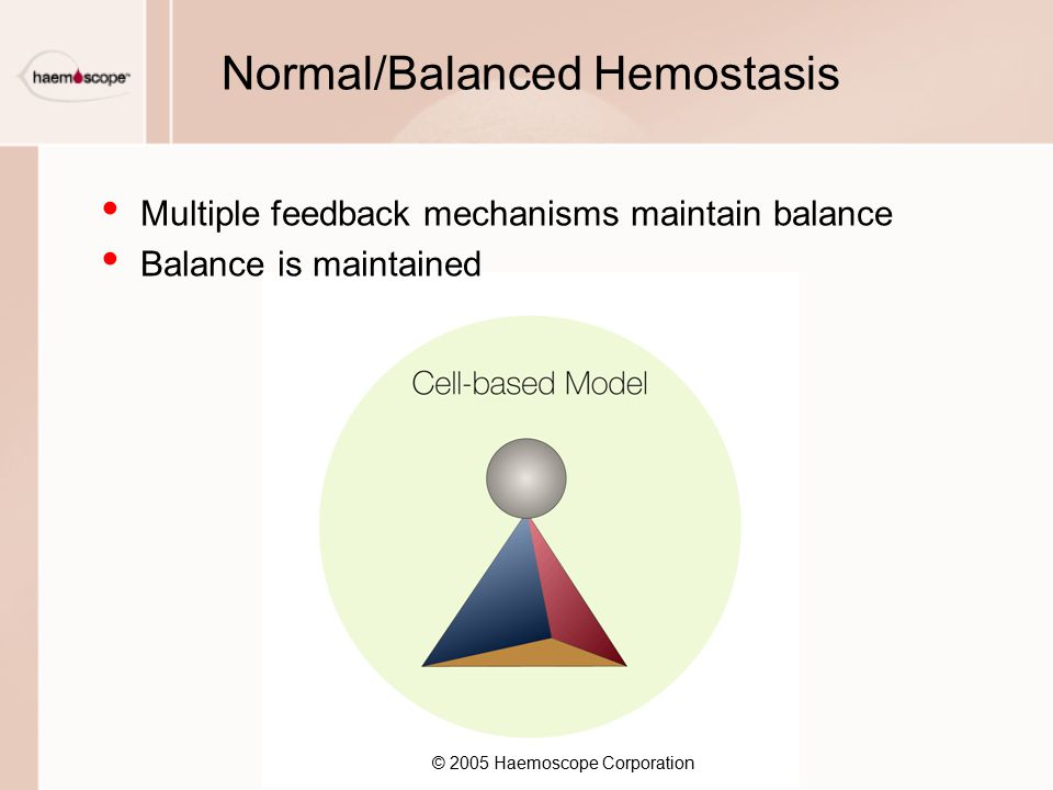 Normal/Balanced Hemostasis