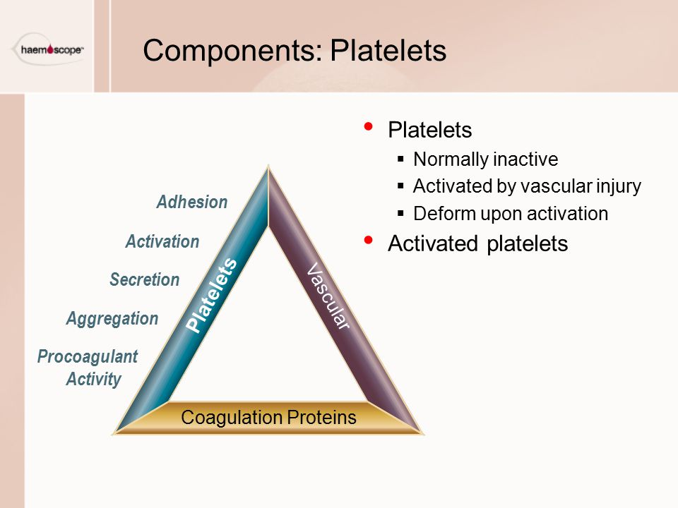 Components: Platelets