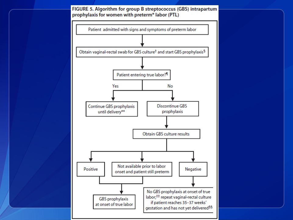 This slide shows algorithms for providing GBS intrapartum prophylaxis for women with preterm labor.