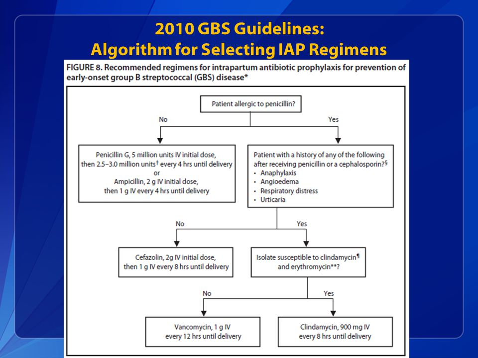 2010 GBS Guidelines: Algorithm for Selecting IAP Regimens