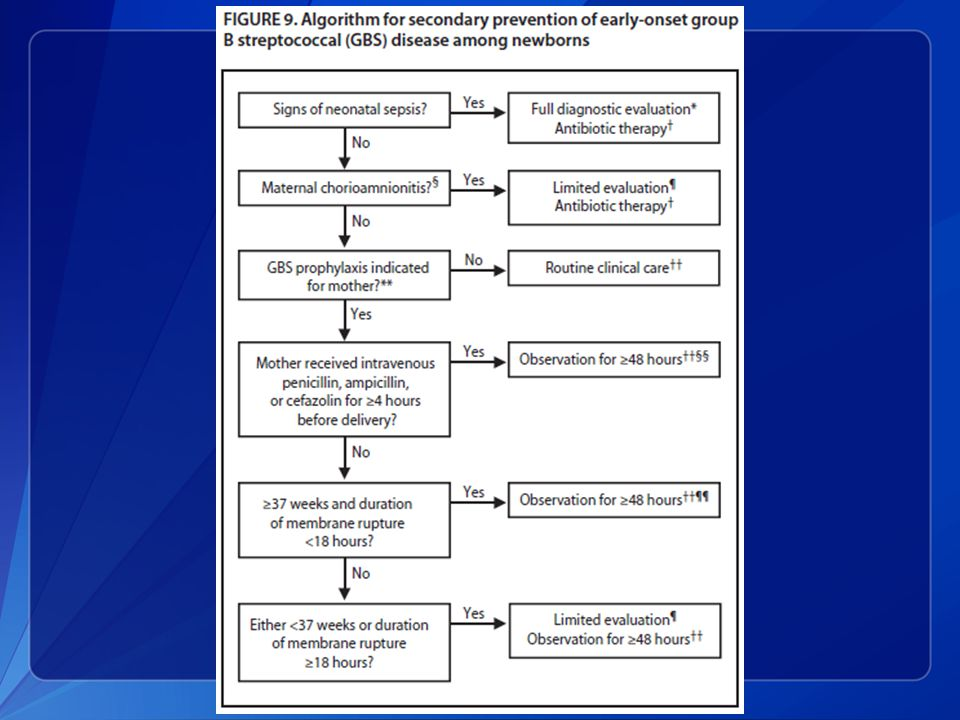 This slide shows an algorithm for the secondary prevention of early-onset GBS disease among newborns.