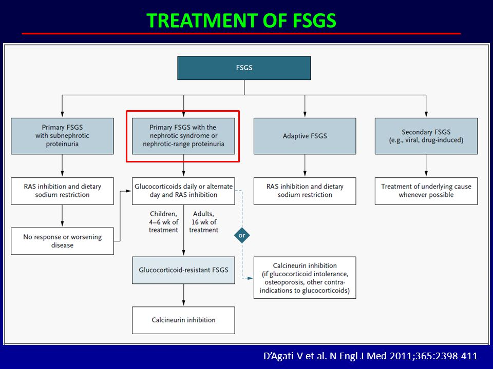 TREATMENT OF FSGS D'Agati V et al. N Engl J Med 2011;365:2398-411