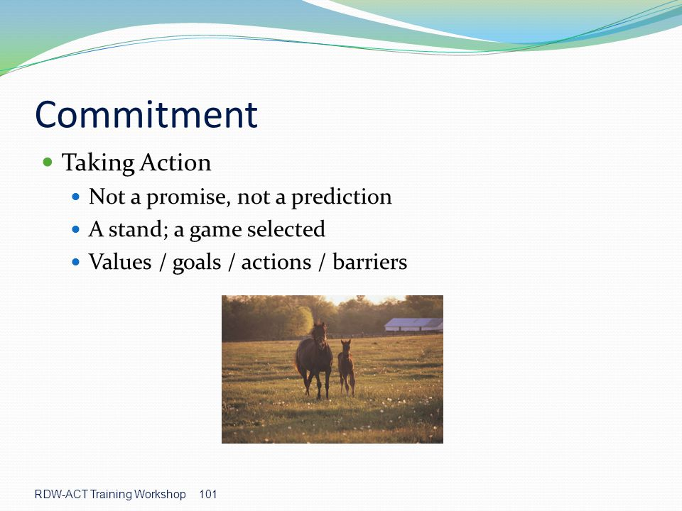 Commitment Taking Action Not a promise, not a prediction
