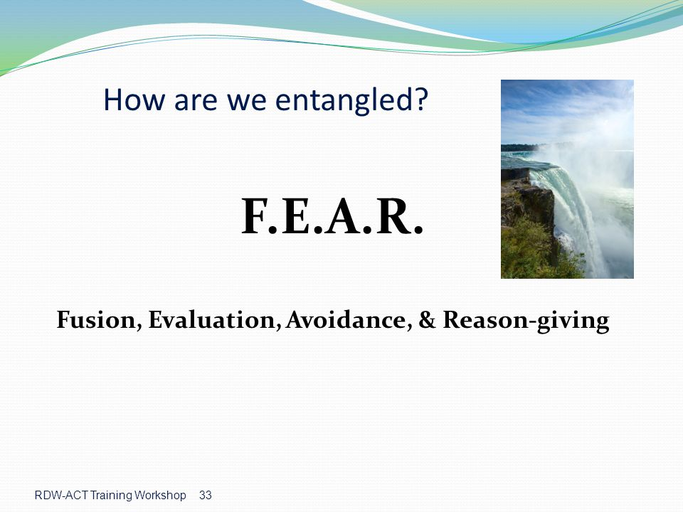 Fusion, Evaluation, Avoidance, & Reason-giving