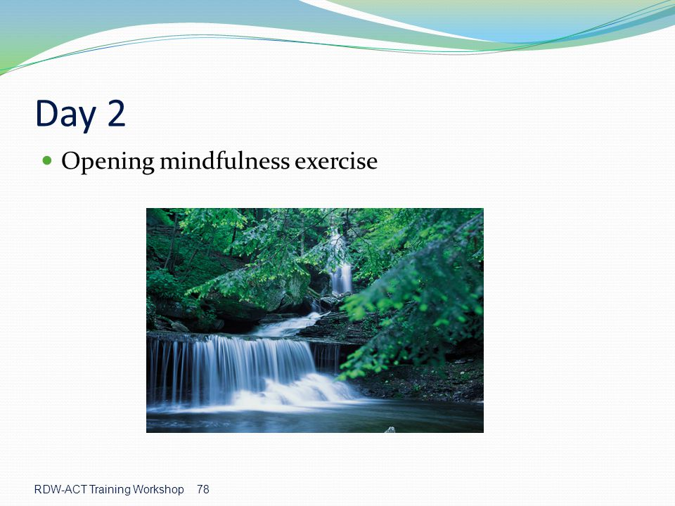 Day 2 Opening mindfulness exercise RDW-ACT Training Workshop