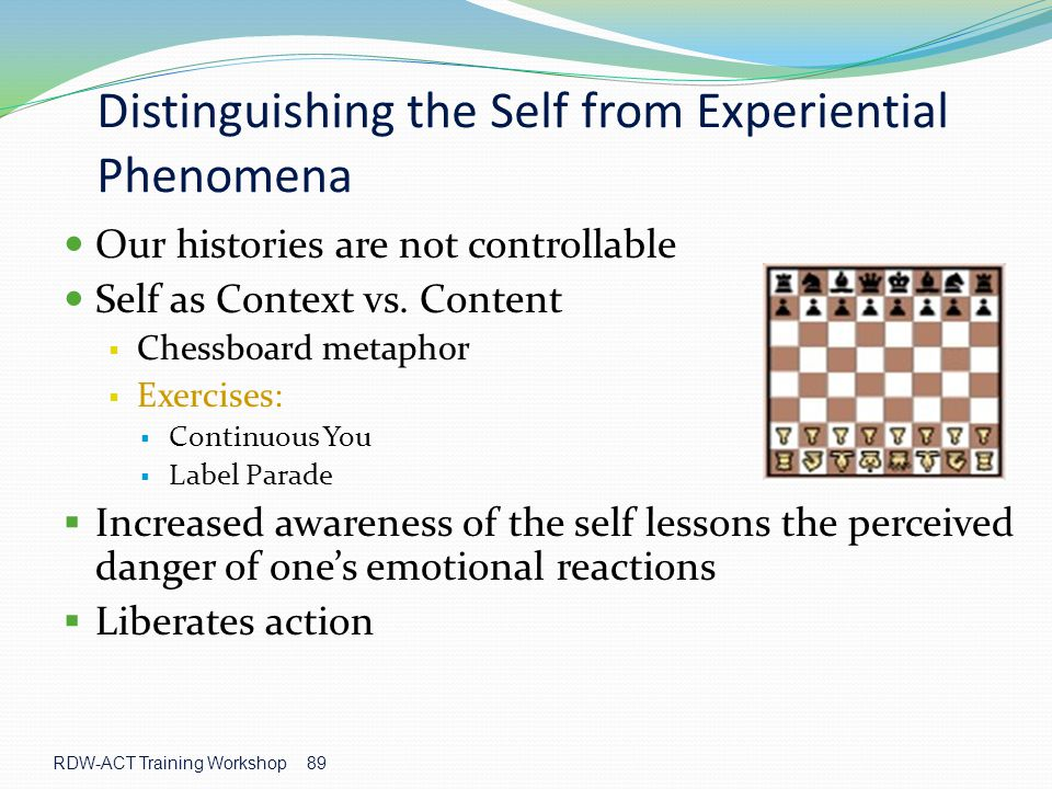Distinguishing the Self from Experiential Phenomena