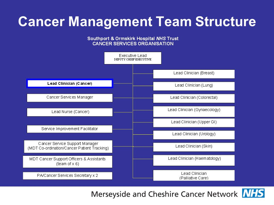 Cancer Management Team Structure