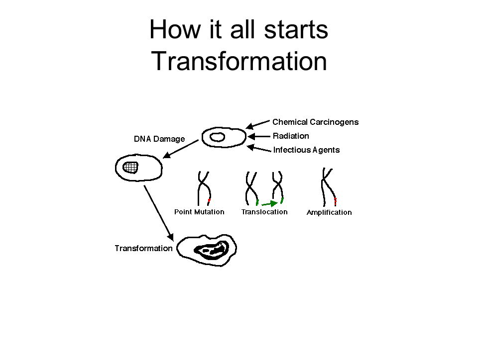 How it all starts Transformation