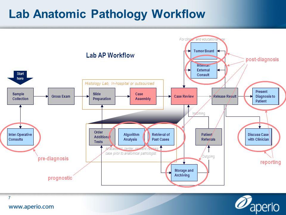 Lab Anatomic Pathology Workflow