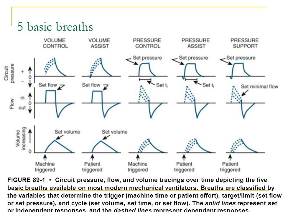 5 basic breaths