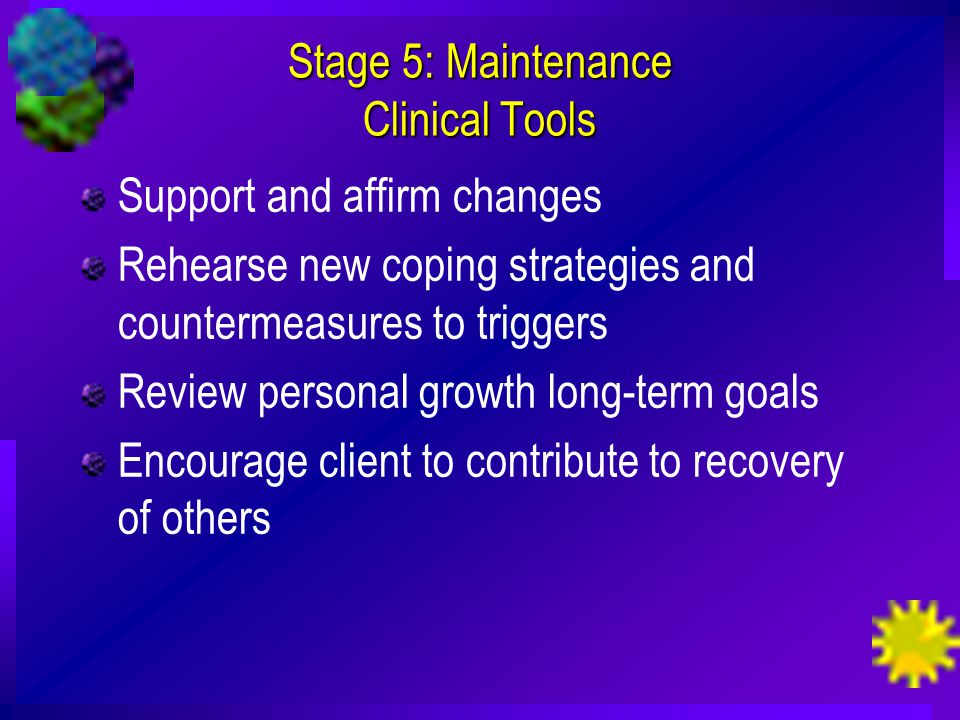 Stage 5: Maintenance Clinical Tools