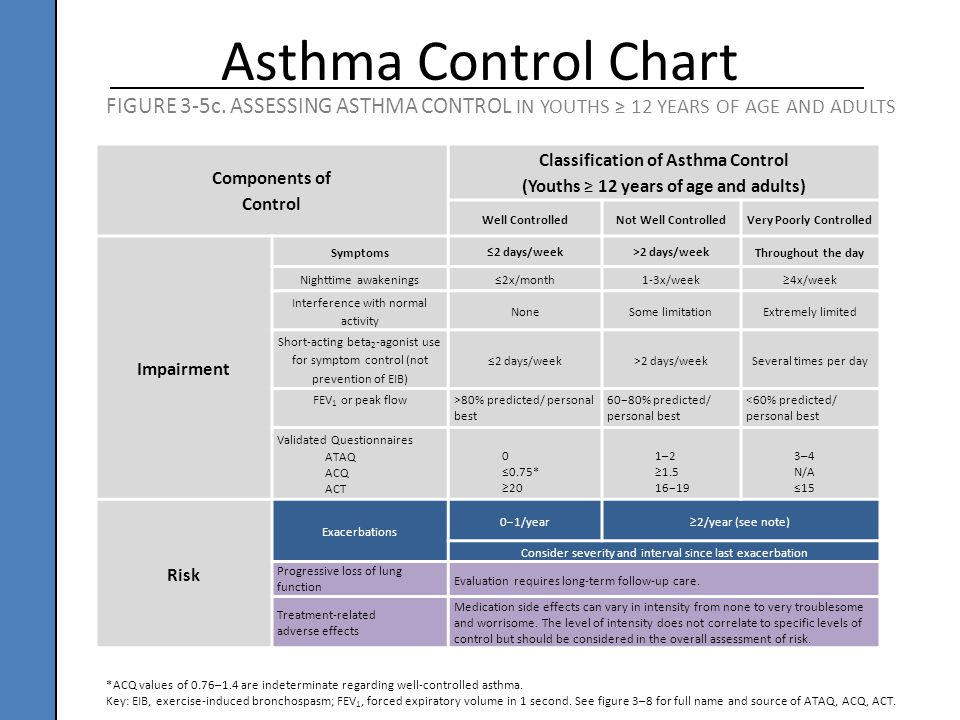 the disease of asthma essay