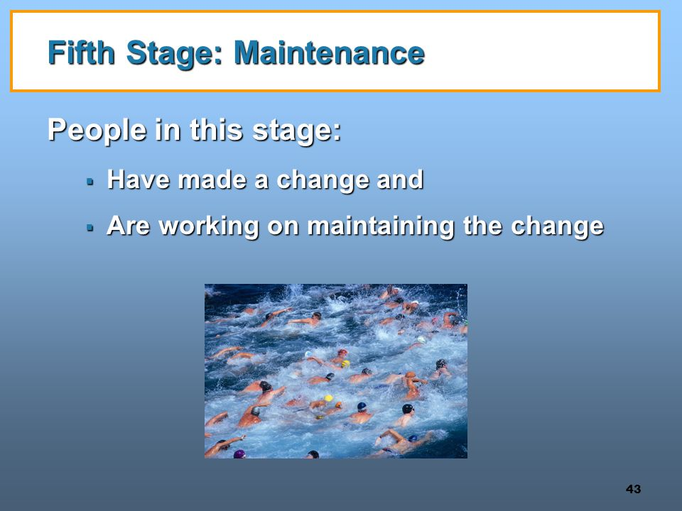 Fifth Stage: Maintenance