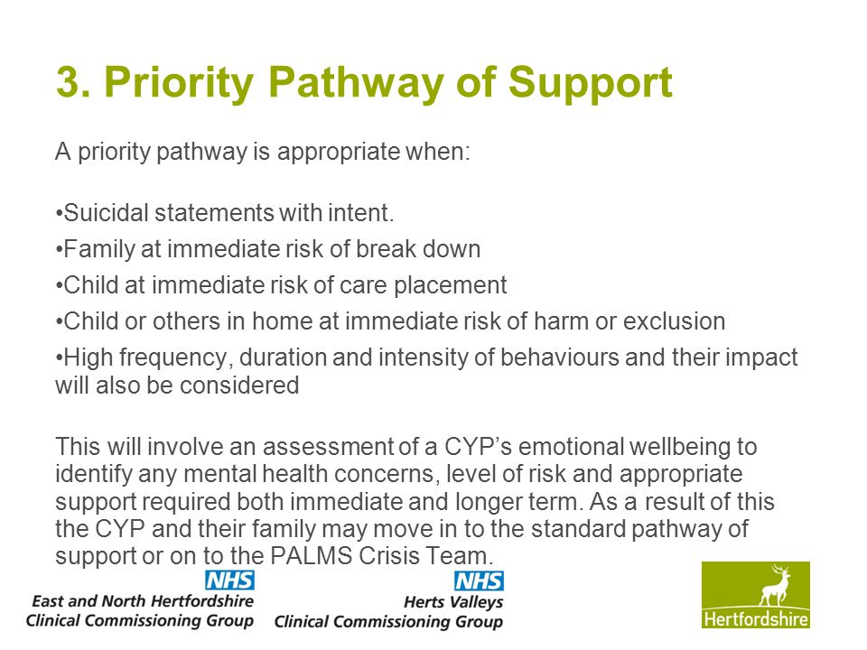 3. Priority Pathway of Support