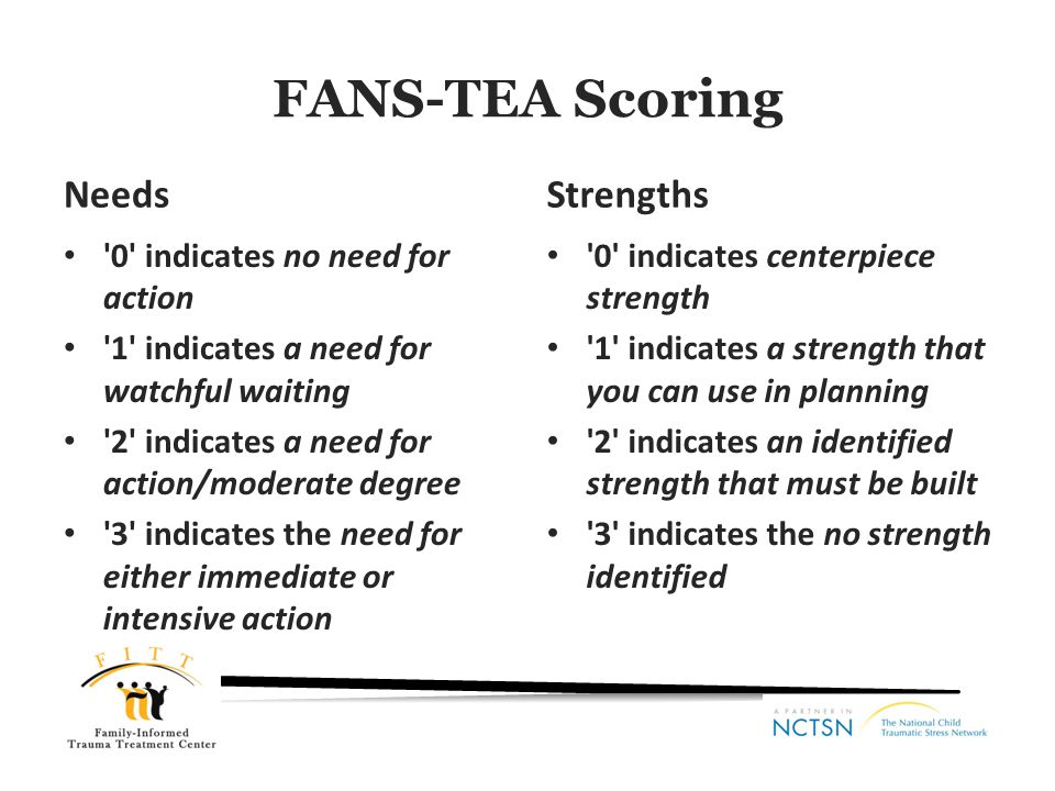 FANS-TEA Scoring Needs Strengths 0 indicates no need for action