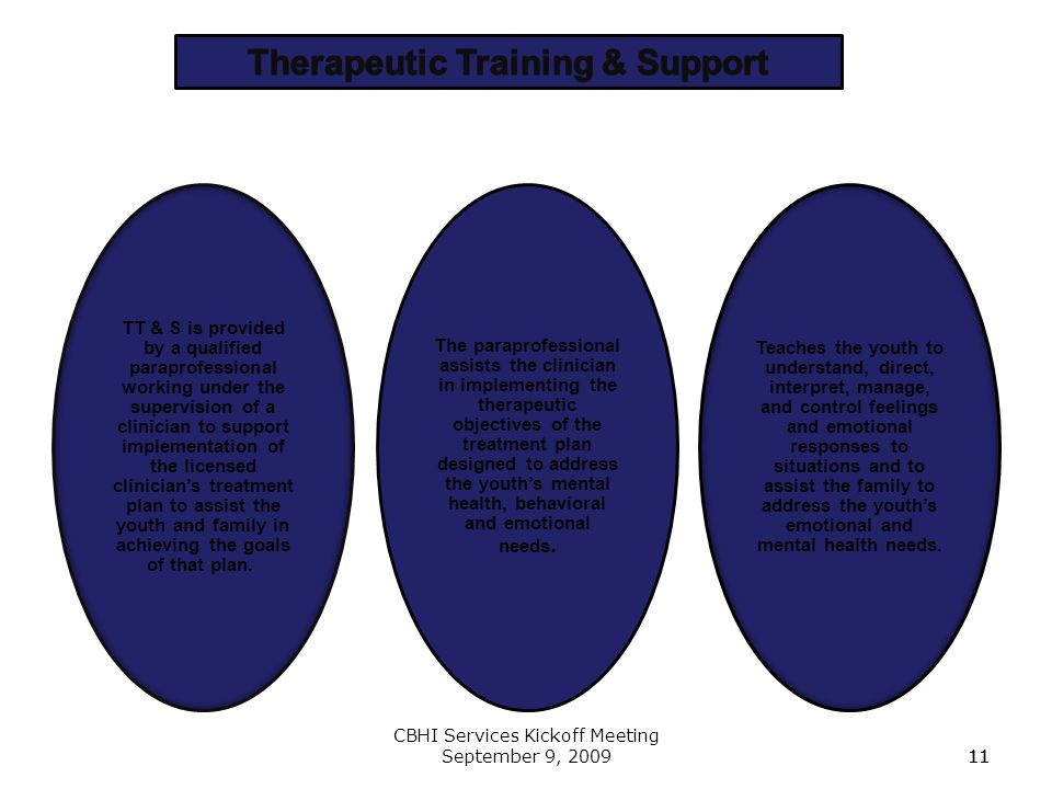 Therapeutic Training & Support