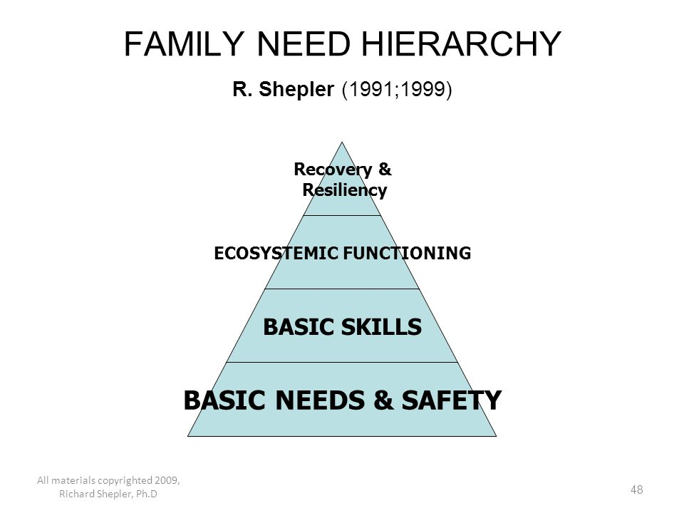 FAMILY NEED HIERARCHY R. Shepler (1991;1999)